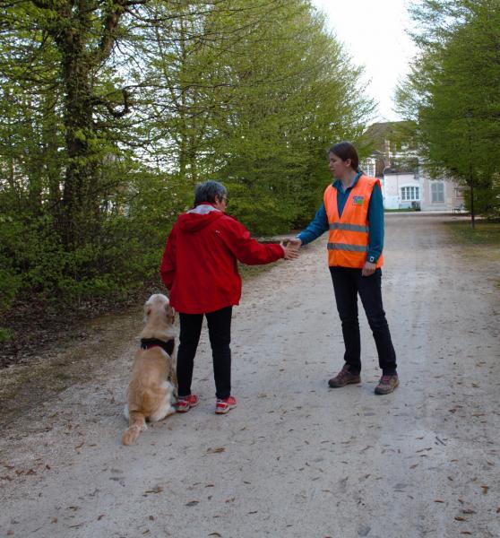 éducation canine individuelle Auxerre